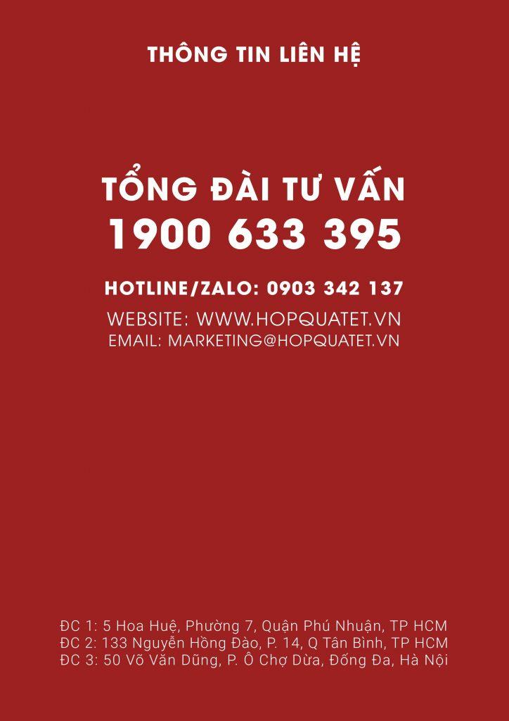 catalogue hộp quà tết 2021 27